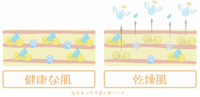 保湿成分の減少によって肌が乾燥する図