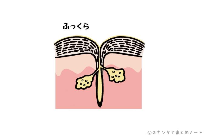 ふっくらすべすべの毛穴
