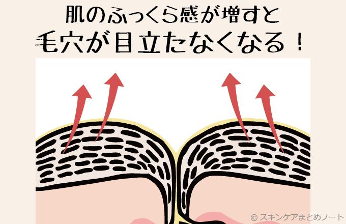 肌がふっくらして毛穴の目立ちが改善するイメージ図